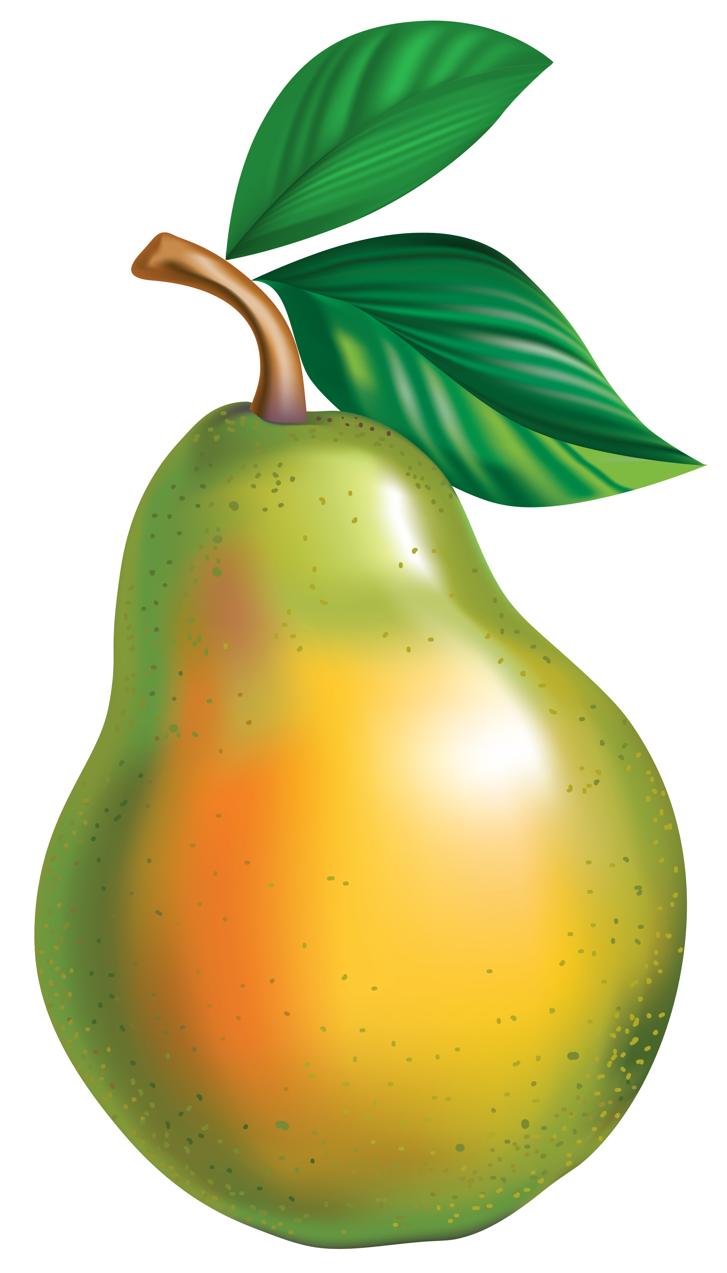 2367x4144 Pear Png Clipart Pictureu200b Gallery Yopriceville