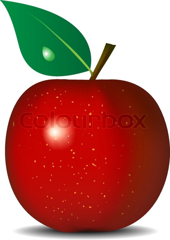 566x800 Vector Illustration Of Fresh Red Apple Isolated On White
