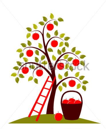 370x450 Apple Orchard Border Clipart