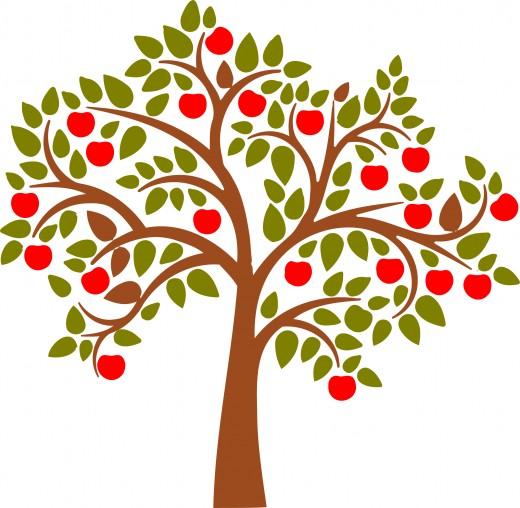 520x508 Apple Tree Clip Art