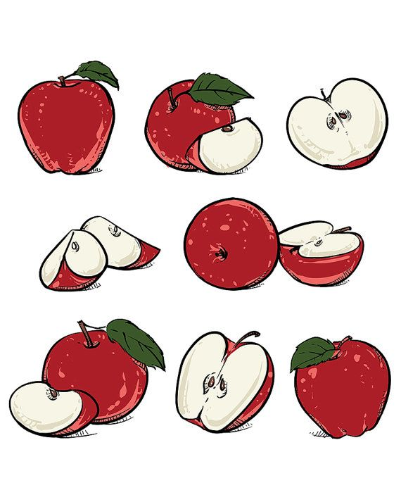 570x713 18 Best Etsy Fruit Clipart Hand Drawn Collection Of Fruits