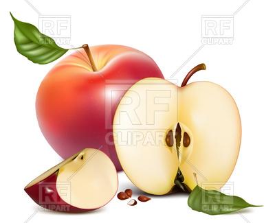400x325 Apple Half And Slice Royalty Free Vector Clip Art Image