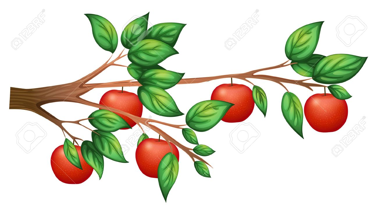 Apple Tree Branch Clipart Free Download Best Apple Tree Branch