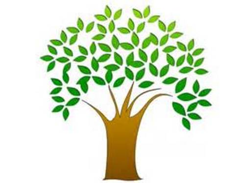 500x373 Barren Clipart Apple Tree