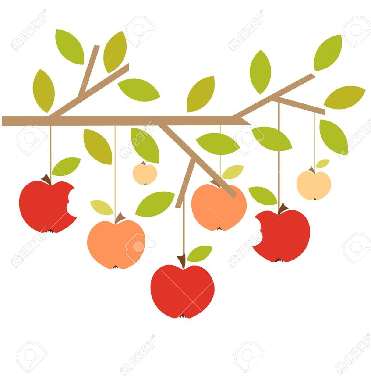 1254x1300 Cherry Tree Clipart Apple Tree Branch