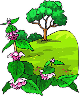 270x324 Clipart Trees And Flowers