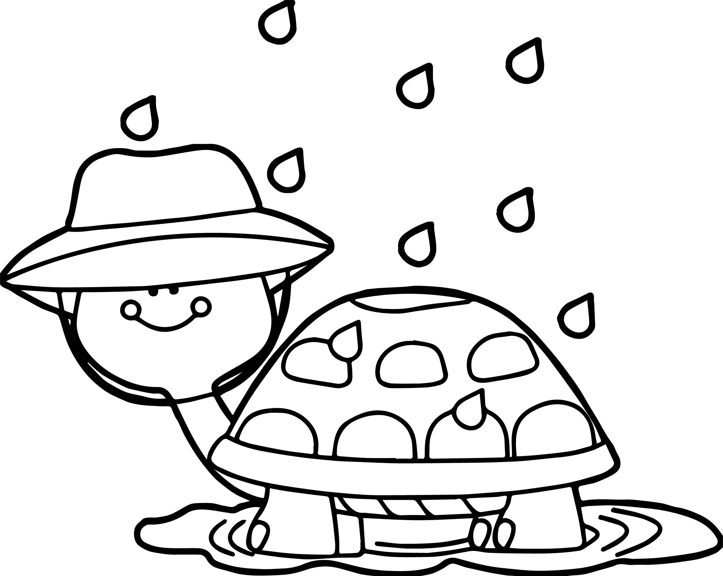 2507x1998 April Shower Turtle Coloring Page Wecoloringpage