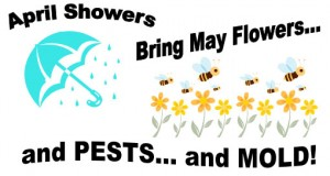 300x160 April Showers Bring May Flowers Rhyme