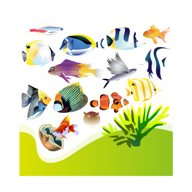 1500x1500 Aquarium Clip Art