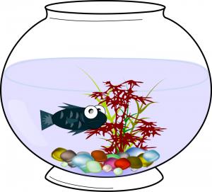 300x271 Aquarium Clip Art Download