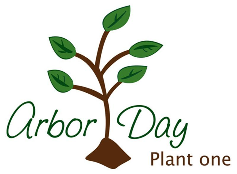 800x590 Arbor Day Plant One Clipart