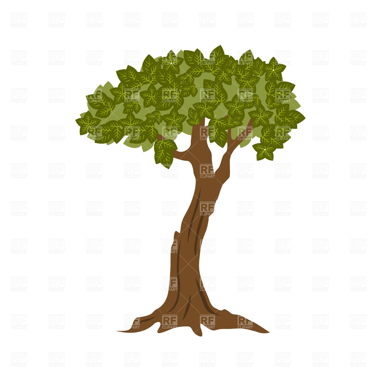 1200x1200 Foliage bonsai tree Royalty Free Vector Clip Art Image
