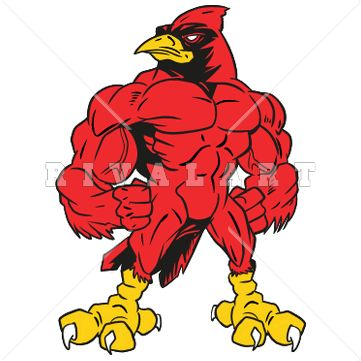 361x361 Mascot Clipart Image Of Cardinal With Muscles In Color Graphic