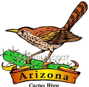 300x294 Arizona State Bird Clipart