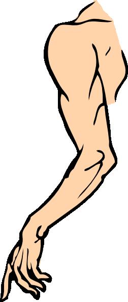 252x592 Arm Clip Art