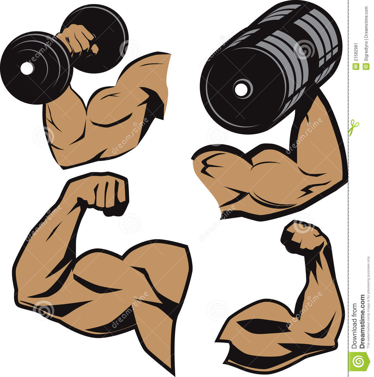 1290x1300 Flexing Muscle Clipart