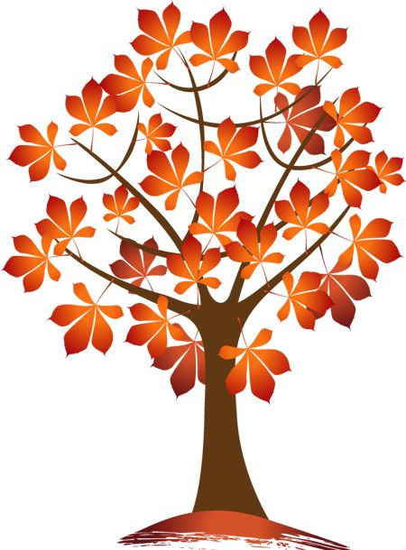 450x610 73 Best Autumn Leaves Pictures Images Board