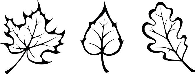 673x256 Cute Fall Leaf Clipart Black And White