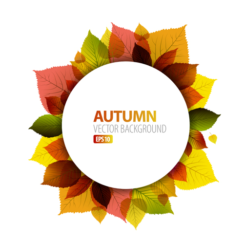 500x495 Autumn Leaves Frame Vector Background