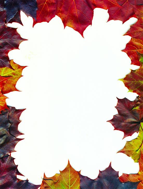 550x725 Free Thanksgiving Borders