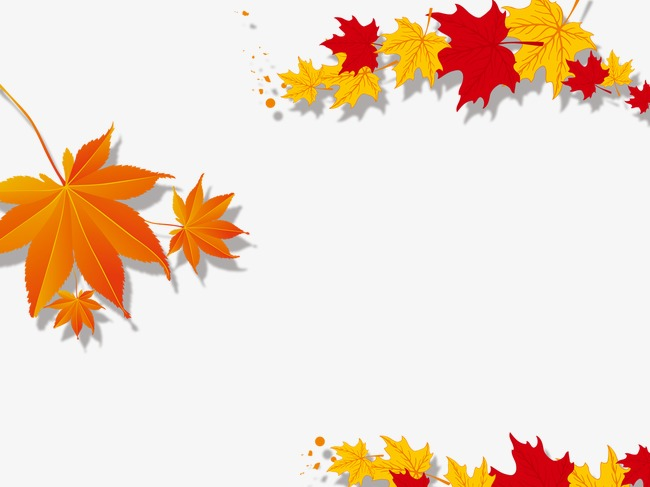 650x487 Maple Leaf Border, Maple Leaf Png And Psd File For Free Download