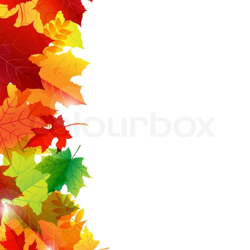 800x800 Autumn Leaves Border Stock Vector Colourbox