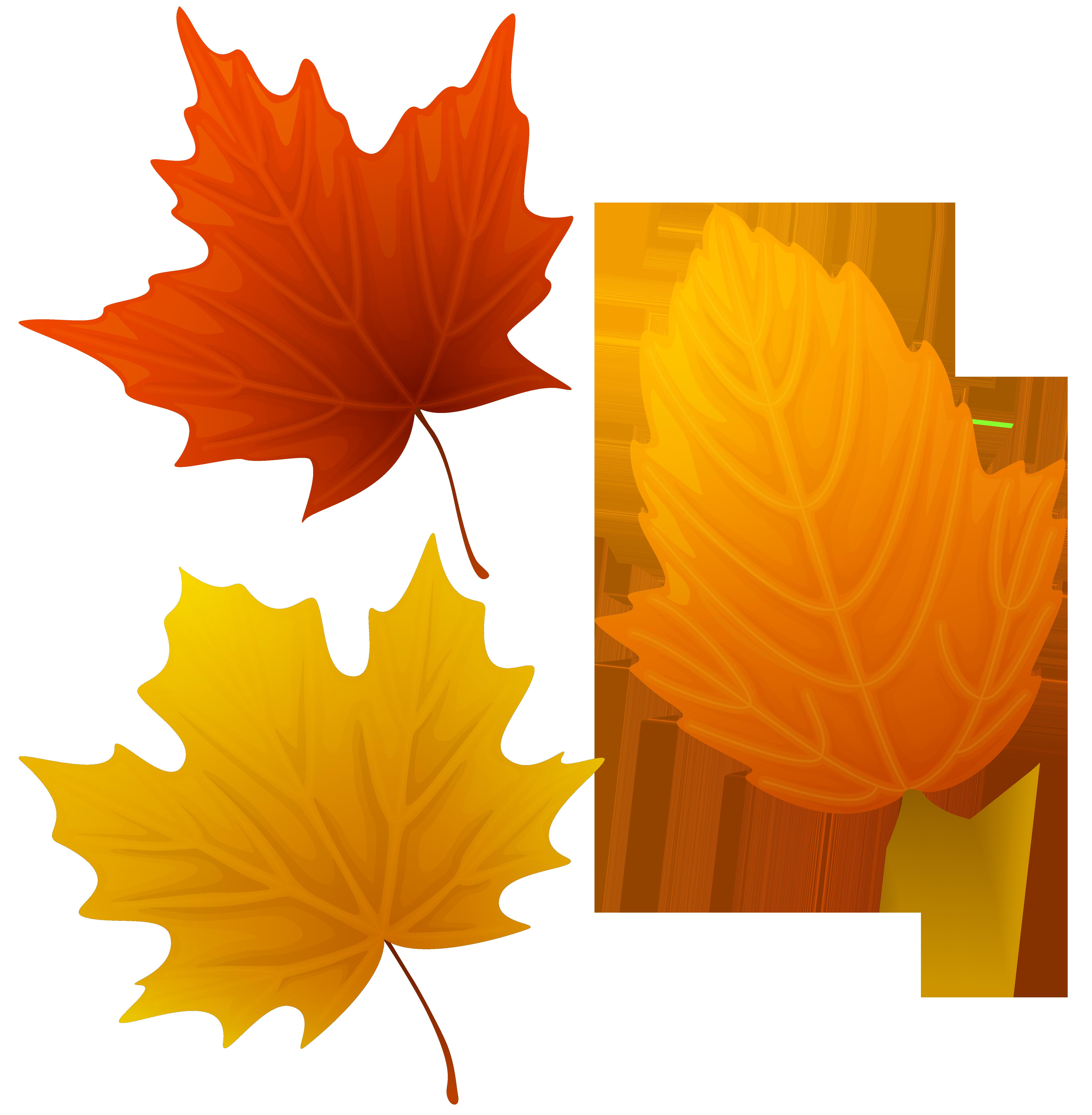6148x6275 Top 88 Autumn Leaves Clip Art