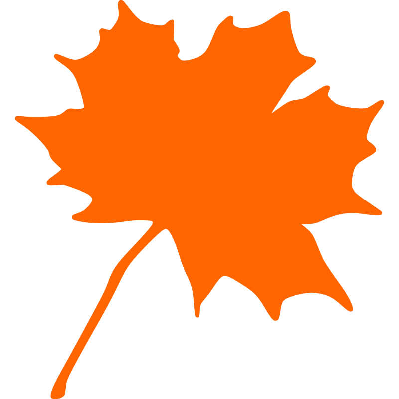 800x800 Autumn Leaf Clip Art