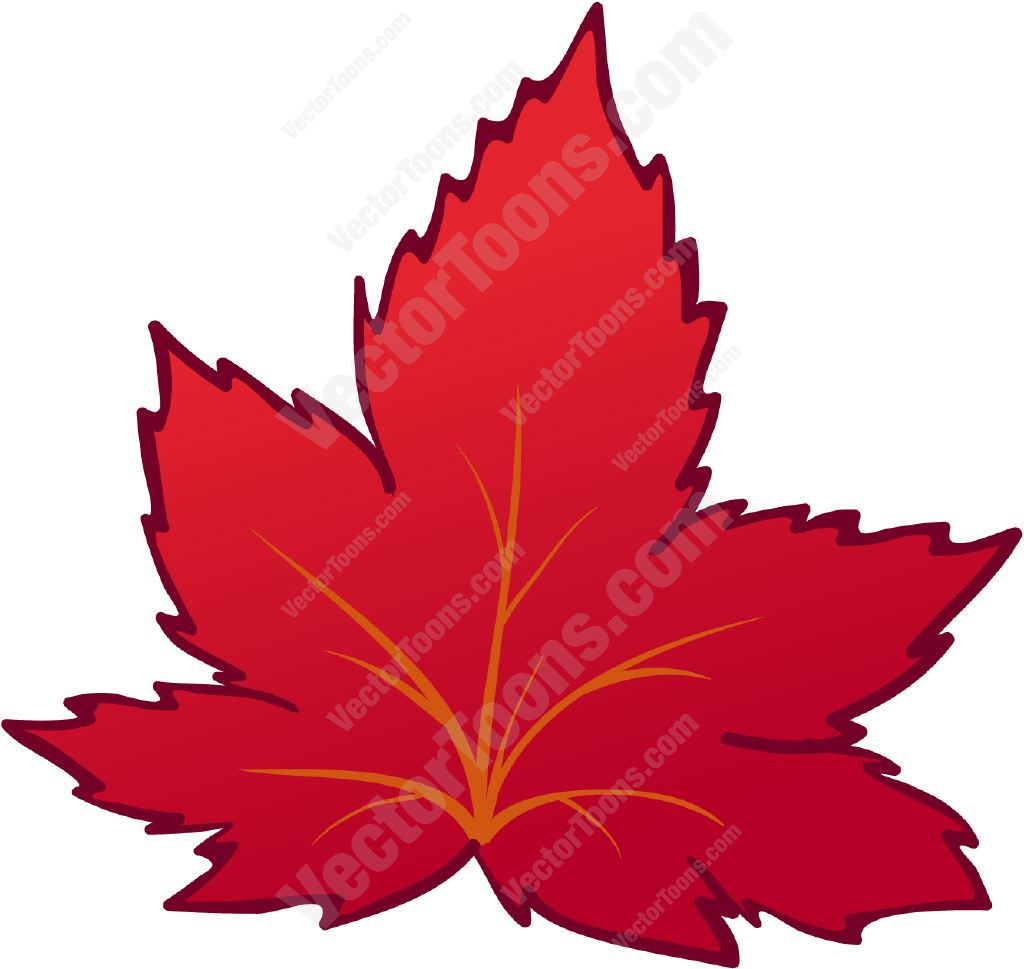 1024x969 Red Autumn Leaf Cartoon Clipart