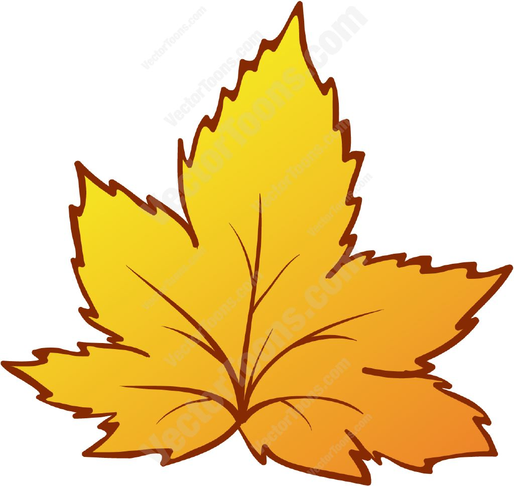 1024x969 Yellow Autumn Leaf Fall Leaves And Cartoon Images