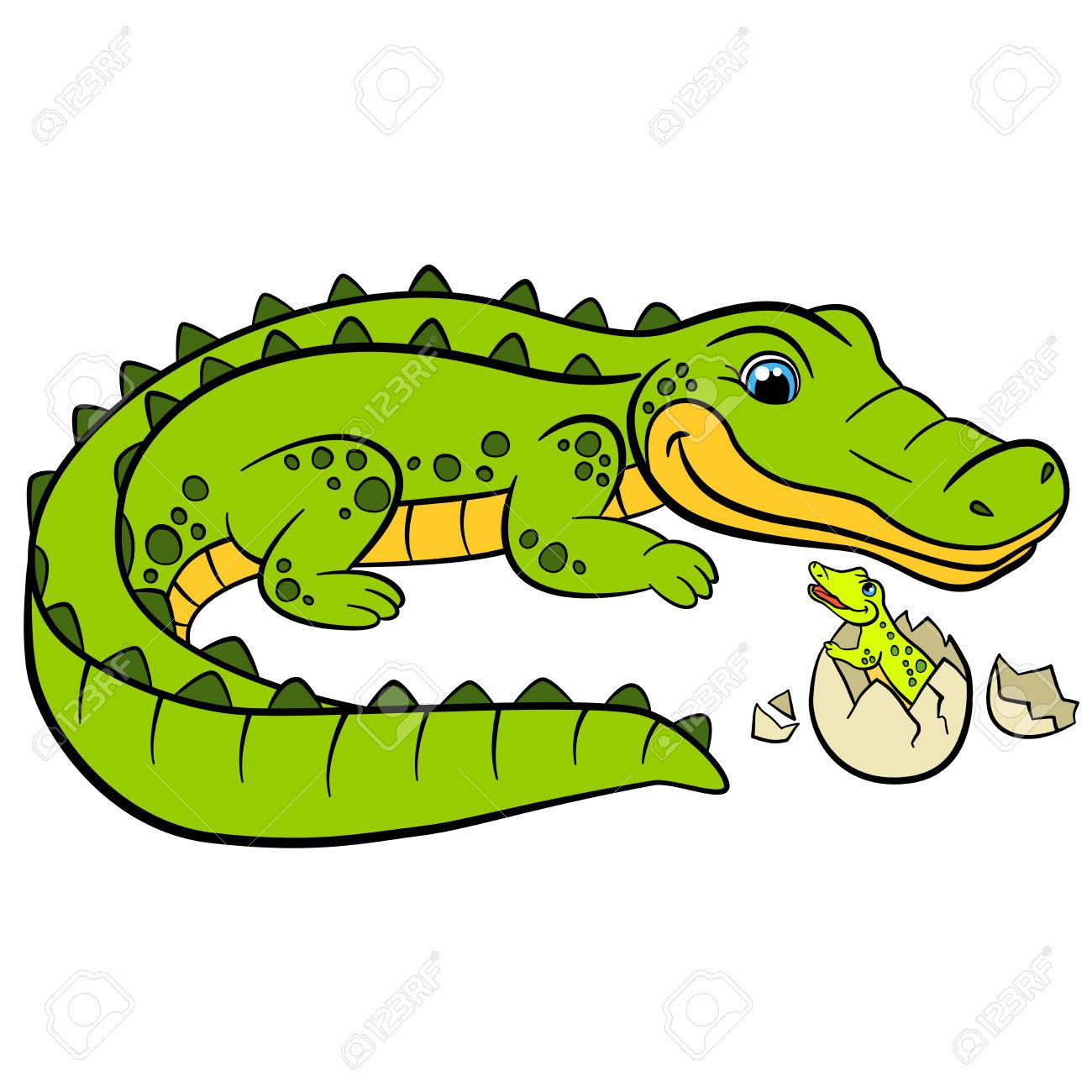 1300x1300 Amphibian Clipart Baby Alligator