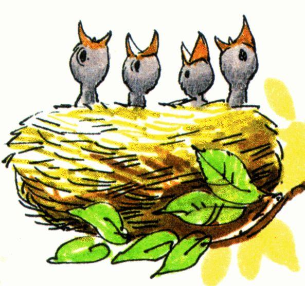 593x557 Top 97 Nest Clip Art