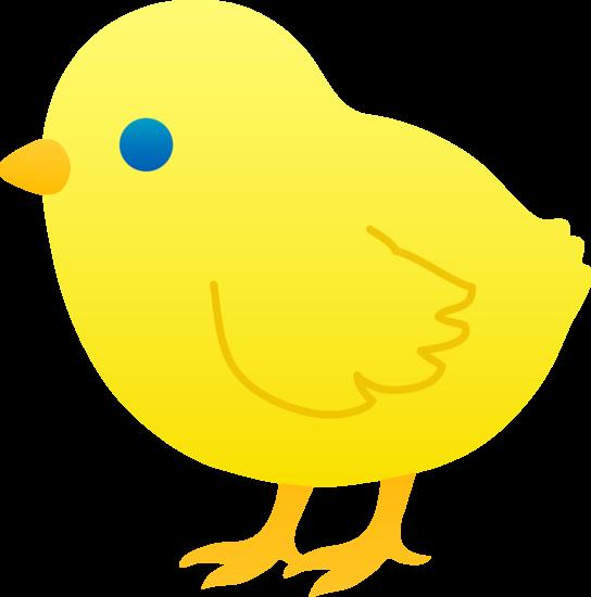 544x550 Cute Yellow Baby Chick