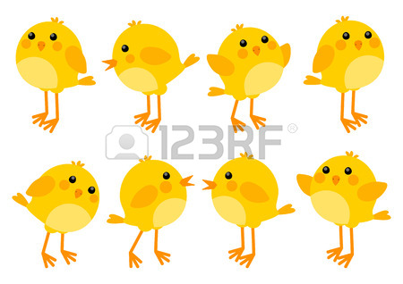450x318 5,595 Baby Chick Stock Vector Illustration And Royalty Free Baby