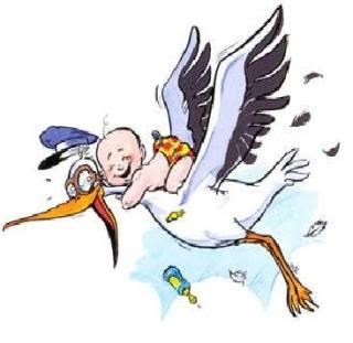 320x311 Baby Clipart Free Stork Baby Clip Art