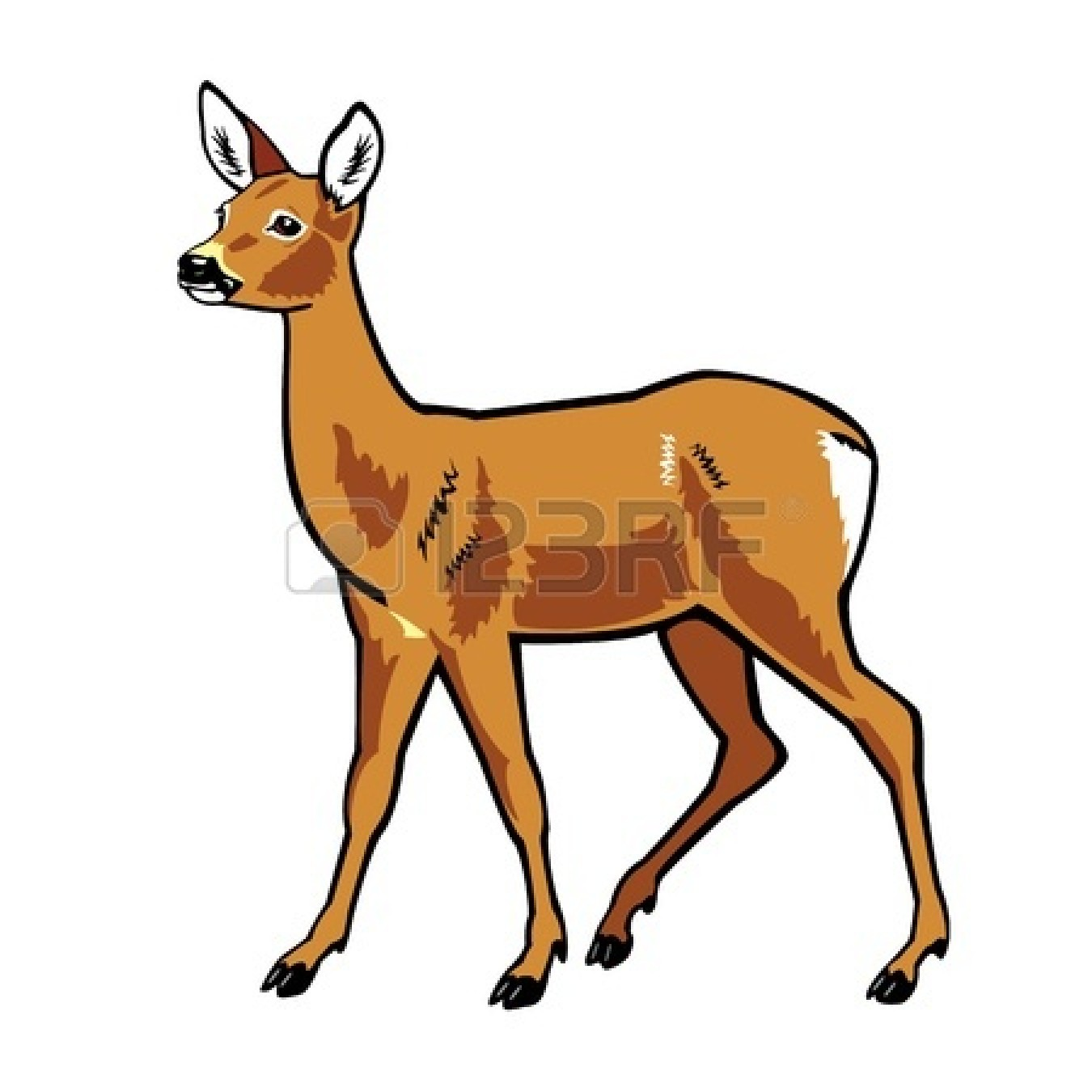 1350x1350 Deer Clipart Doe