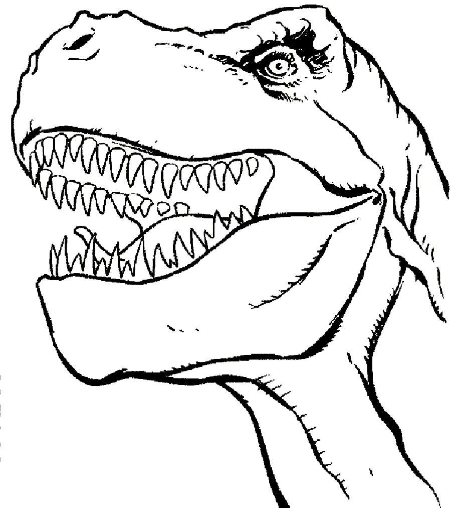 900x1012 Animal Baby Dinosaur Coloring Pages Coloring Pages Online