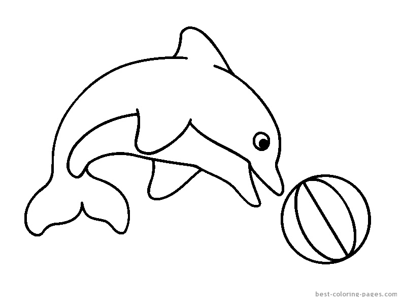 baby dolphin coloring pages free download best baby dolphin