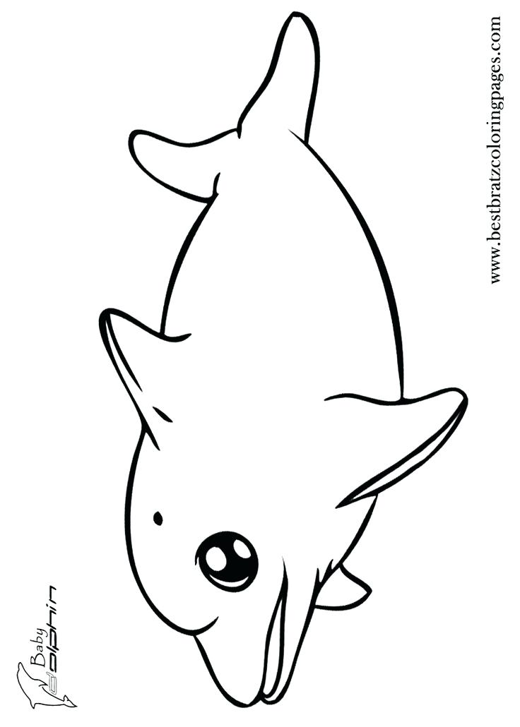 736x1030 Learn Social Bonds By Dolphins Coloring Pages Playful