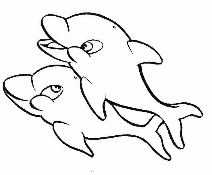 817x675 Trend Dolphin Coloring Pages Best Gallery Colo