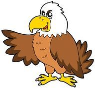 191x179 46 Best Eagles Images Pictures, 2nd Grades