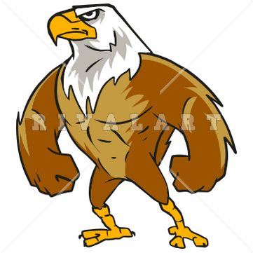 361x361 Eagle School Mascot Clipart