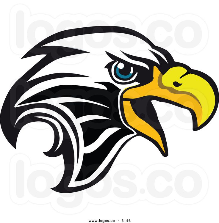 736x750 White Tailed Eagle Clipart Eagles Basketball