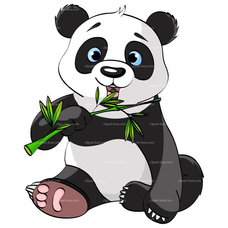 800x800 Panda Bear Clip Art