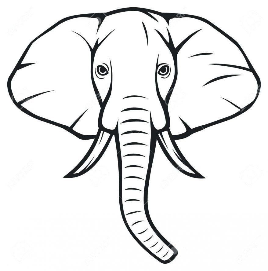 878x887 Elephant Outline Template Pa 138 Interesting Clipart Elephant