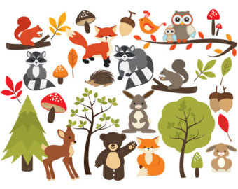 340x270 Racoon clipart woodland friend