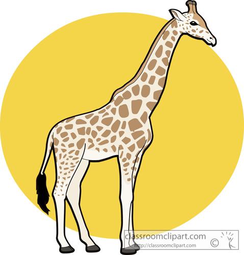 478x500 Image Of Baby Giraffe Clipart 7 Clip Art
