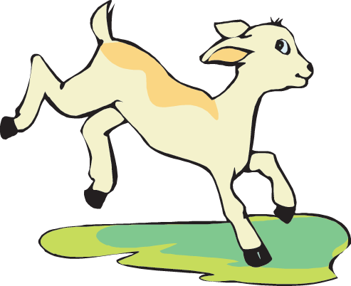 493x402 Mountain Goat Clipart Baby Goat