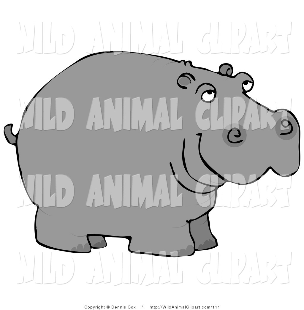 1024x1044 Hippo Clipart Clip Art Of A Wild Hippopotamus On A White