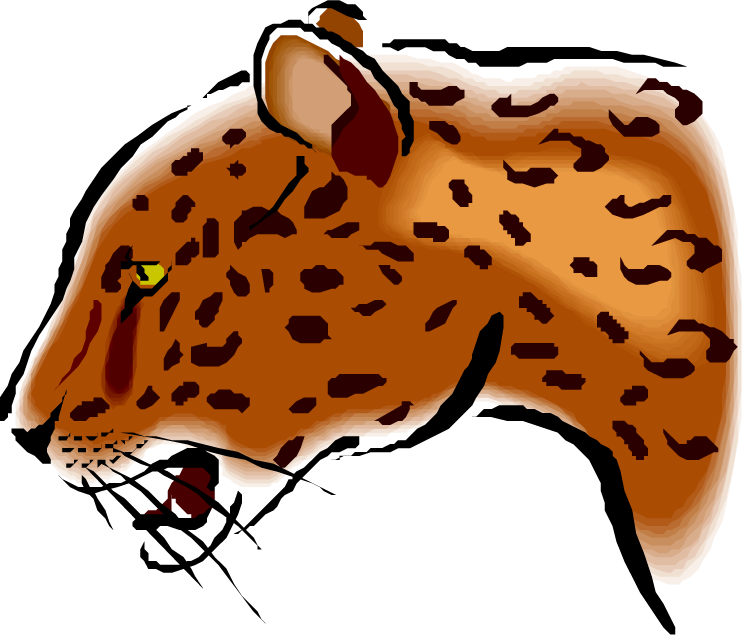 750x635 Female Jaguar Clipart
